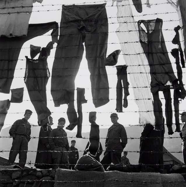 PoW Camp at Koje Do, South Korea, 1952.